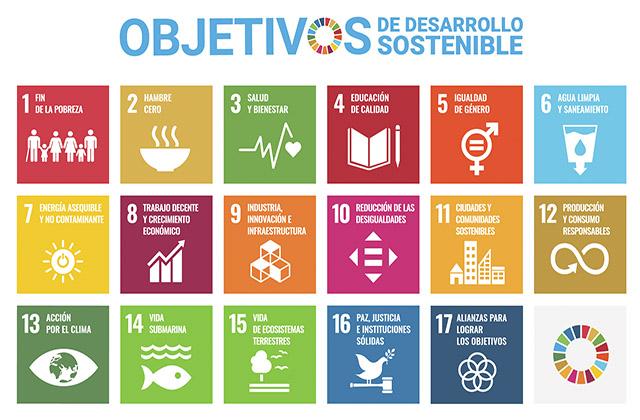 ODS de las Naciones Unidas